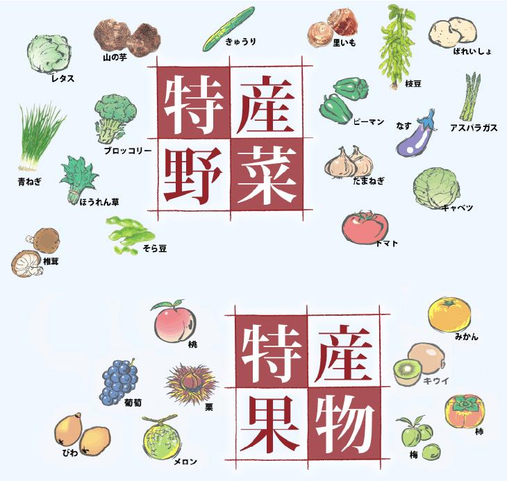 愛媛の特産 特産野菜 特産果物